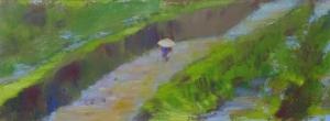 Rijstveld, China, 14 x 38, acryl op papier, € 175,-
