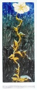 Haiku, plantje, 20 x 53, ets/linosnede, € 235,-;