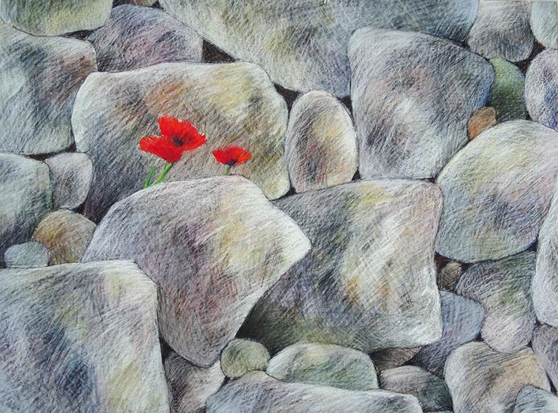 Sterker dan steen  III, (keien en klaproos), 43 x 57, pastel, € 325,-